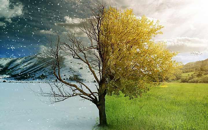 лето и зима
